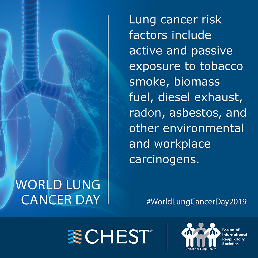 NEW Lung Cancer Fact Card Instagram 2
